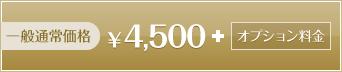 一般通常価格 4500円+オプション料金