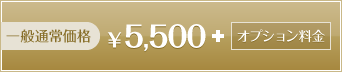 一般通常価格 5500円+オプション料金
